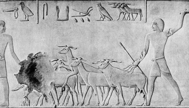 Ancient Egyptians lived close to nature.