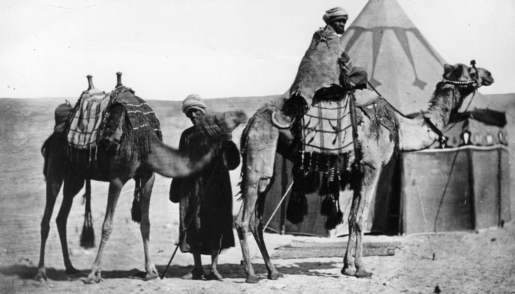 The pre-Islamic Bedouins were desert dwelling nomadic people who traveled in their camel-haired tents from oasis to oasis.
