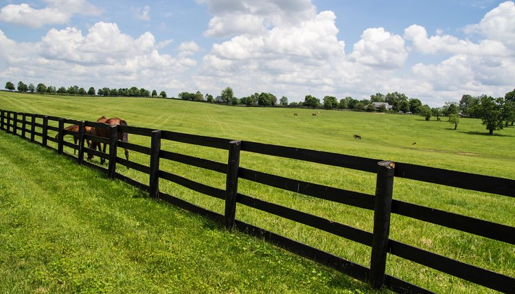 How To Install Horse Fencing Animals Mom Me