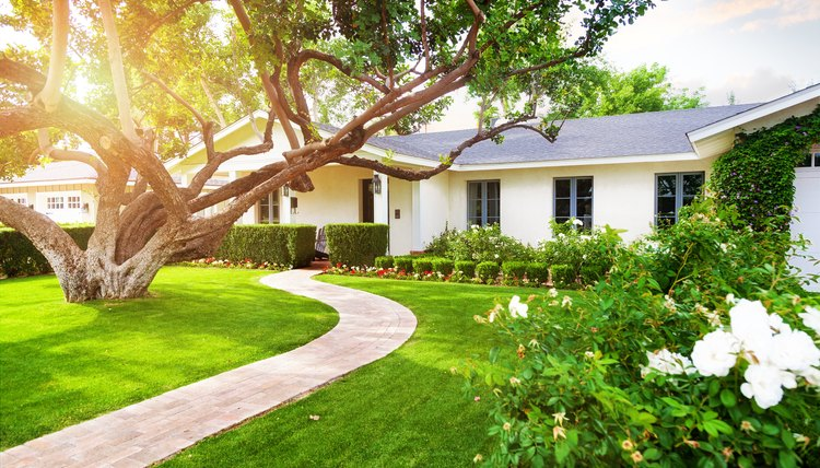 Beautiful Home With Green Grass Yard