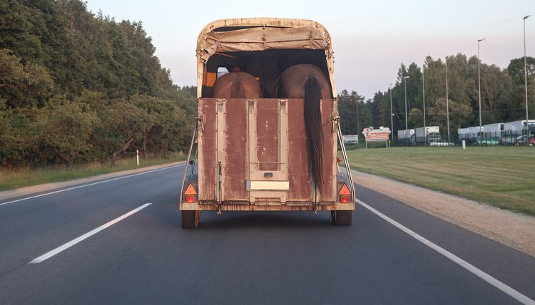 Horse trailer in action on a motorway