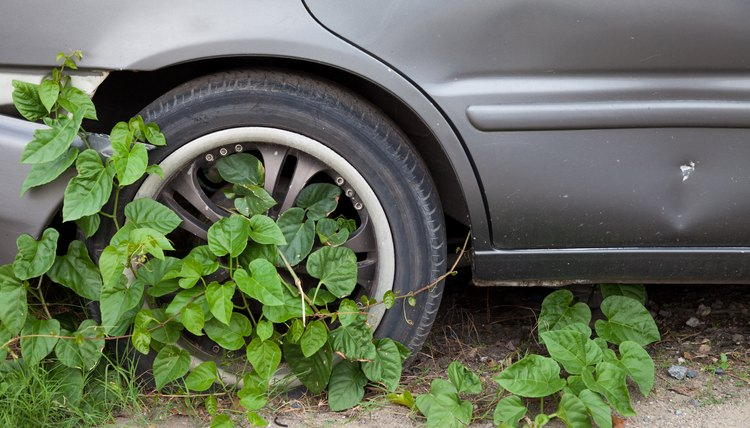 Car wheels covered with ivy
