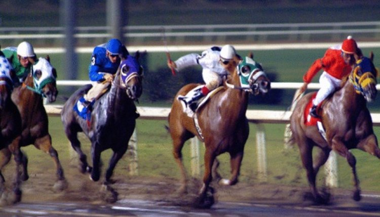 How to Handicap a Horse Race Using a Point System