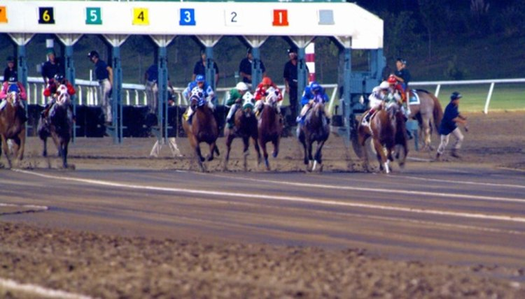 How to Calculate Speed Figures for Horse Races