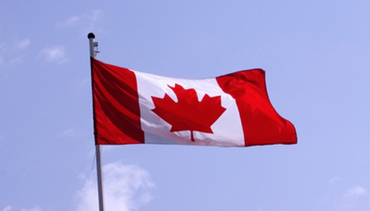 Canadian citizenship is not difficult to obtain if you have certain skills, experiences, or family ties.