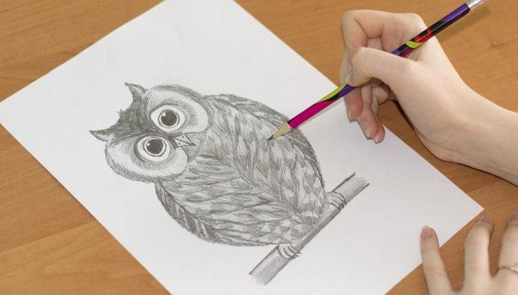 Close-up of owl sketch