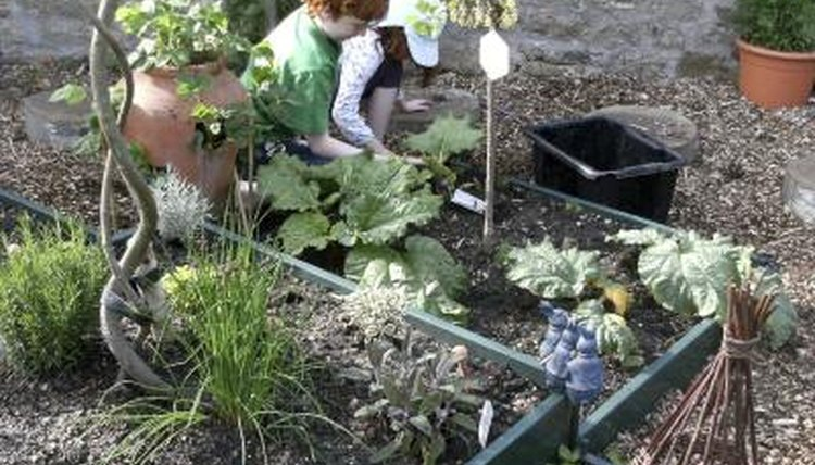 Two young students tend to a school garden.