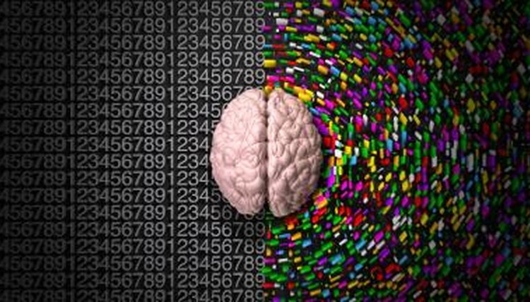 Human brain hemispheres.