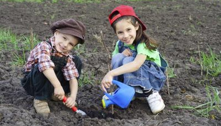 A school garden with two young students working in it