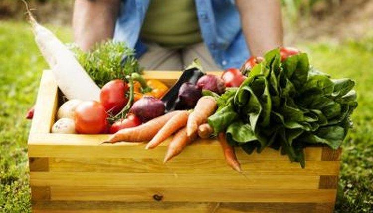 Box of fresh vegetables in garden