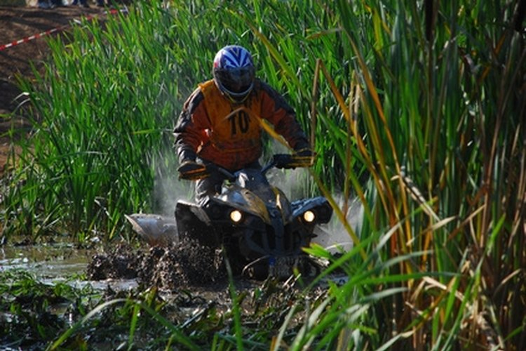Some Mississippi state parks offer trail-riding opportunities for ATV owners.