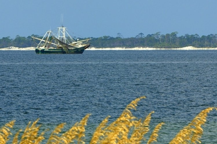 Make your own shrimp traps for recreation in the Gulf.