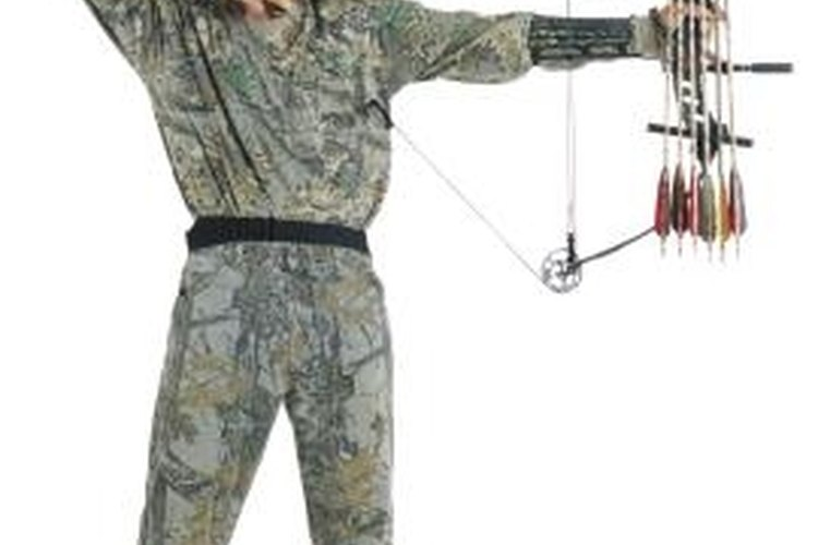 Compound bows provide a steadier, more accurate shot.