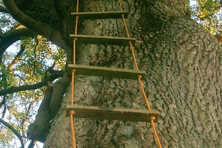 Ladder ropes are a classic tree house accessory.