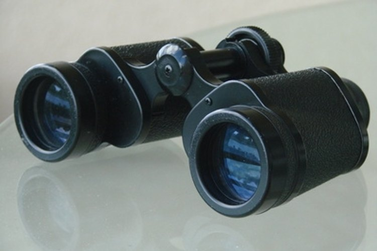 Good binoculars are indispensible for spotting wildlife.
