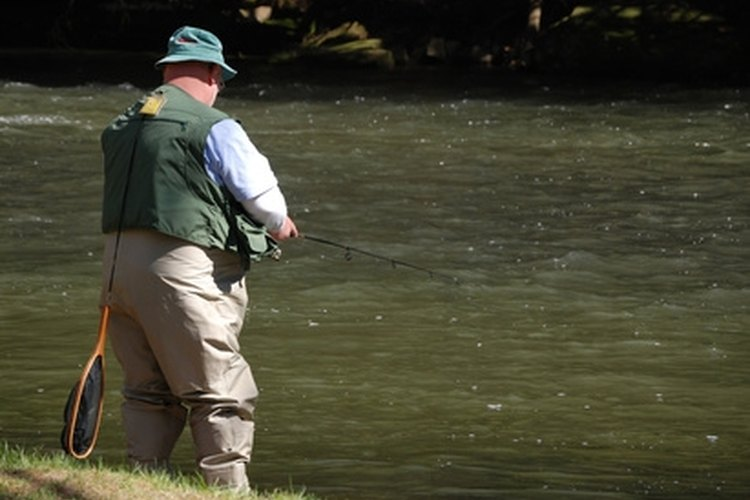 Stream fishing for catfish is a popular activity among fisherman.