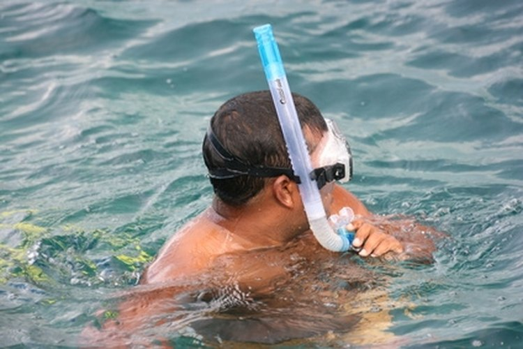 This snorkeler has his snorkel on the right side of the mask.
