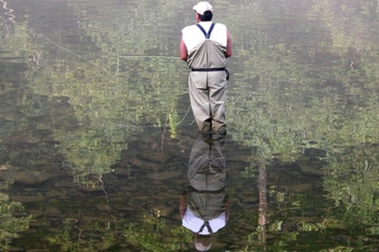 Waders keep you dry while fly fishing.