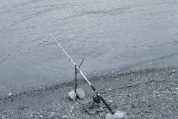 Quantum fishing reels can be adjusted to meet the needs of many fishermen.