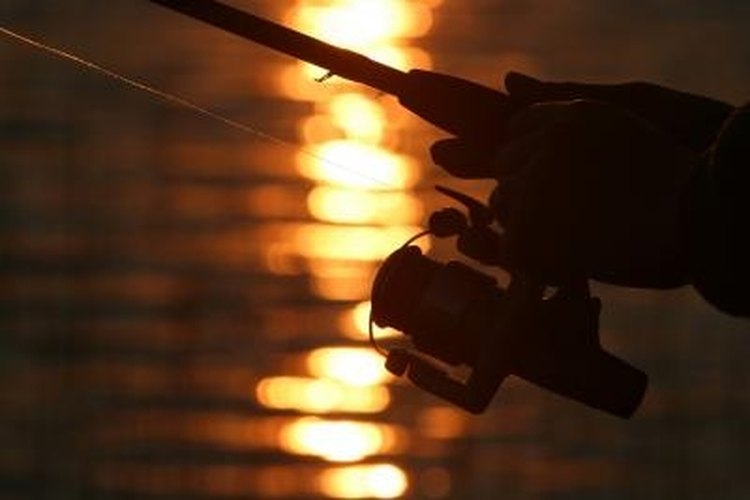 Maintain the drag on your spinning reel.