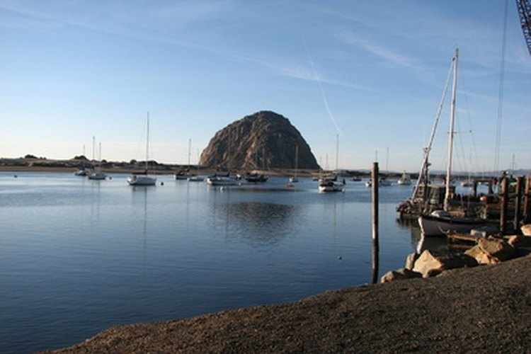 South of Morro Bay, Calif., is where most rock crabs are caught.