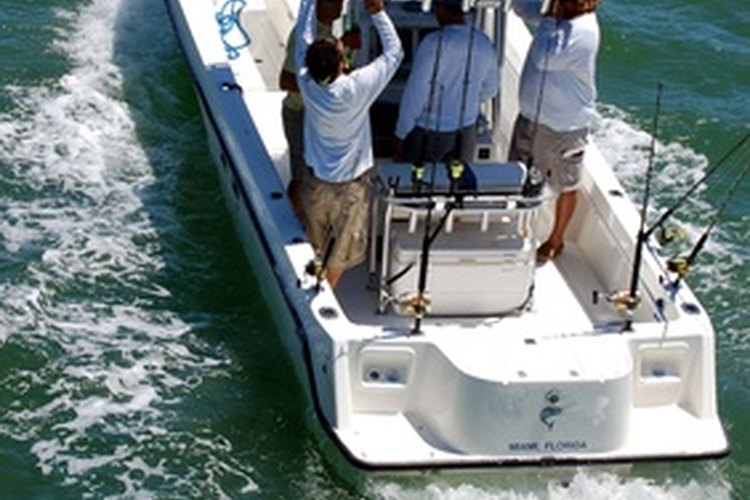Big or little, a fishing boat needs a livewell for the best experience.