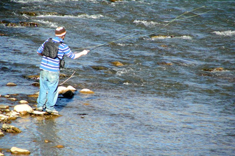 The Red River is a top trout fishery in New Mexico.