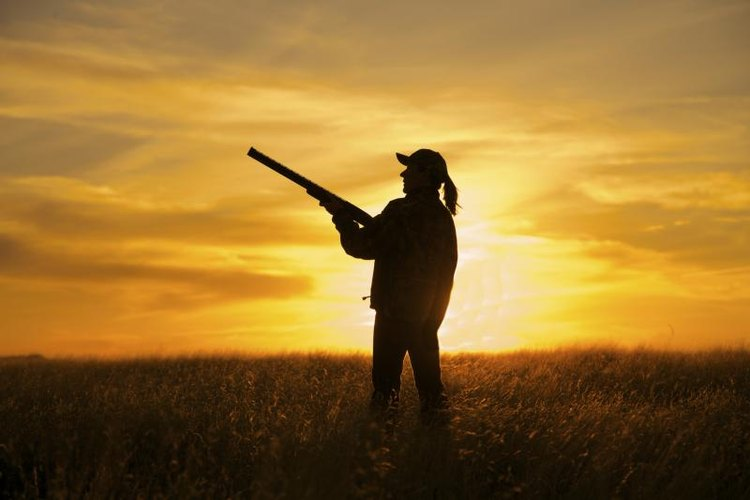 A female hunter holds a shotgun in front of a setting sun.
