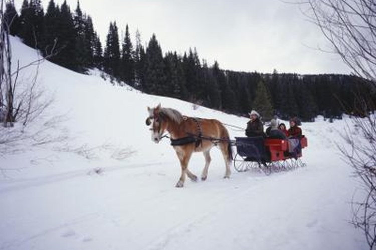 Winter sleigh rides still offer a bit of nostalgia in modern times.
