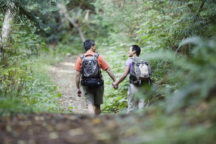 Look out for old forest roads and trails, which can lead you to help.