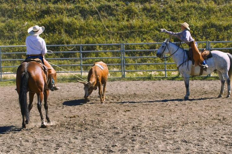 A roping dummy allows you to practice the lassoing fundamentals.