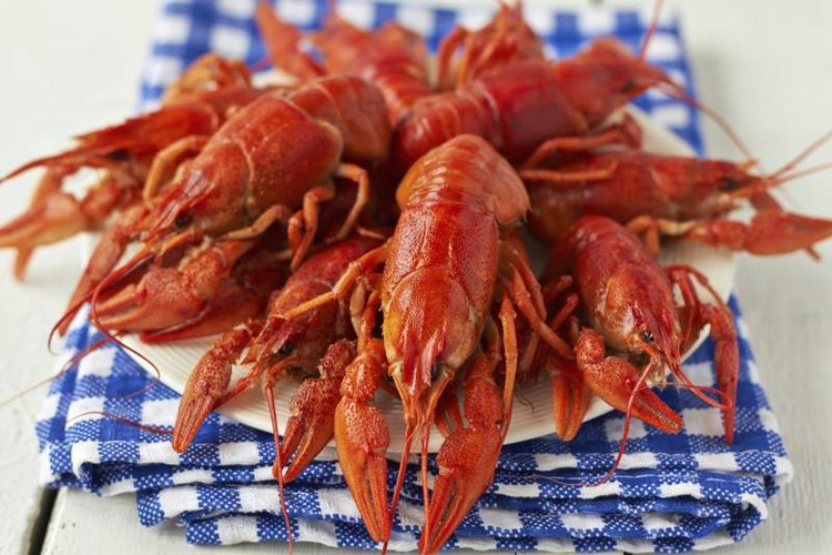 Cooked crawfish on a blue napkin.