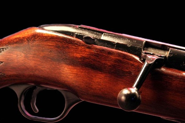 The Crickett 22 is a bolt action rifle, like the one here.