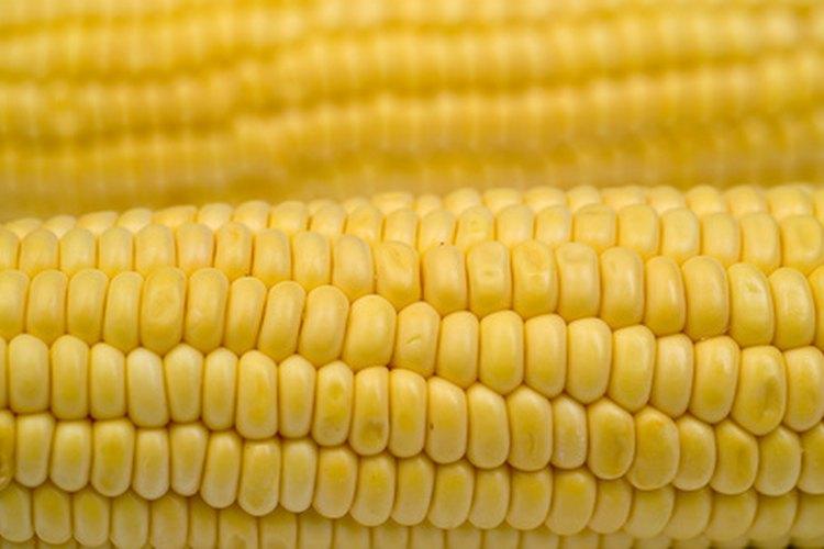 cuantas calorias tiene una mazorca de maiz