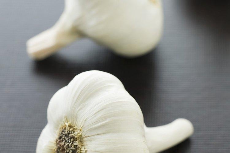 efectos secundarios de comer mucho ajo crudo