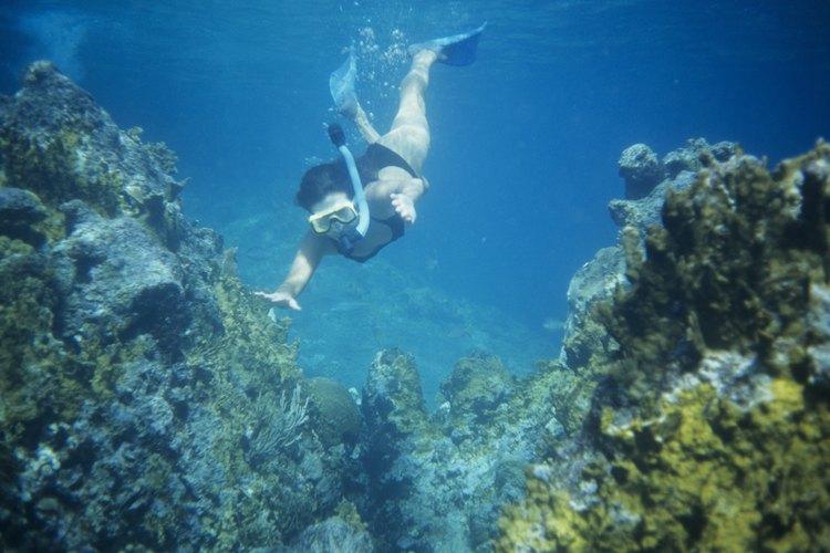 A woman is snorkeling near a reef.