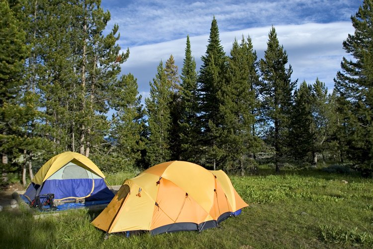 Camping tents in Yellowstone.