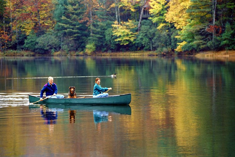 Two people paddling a canoe to shore.