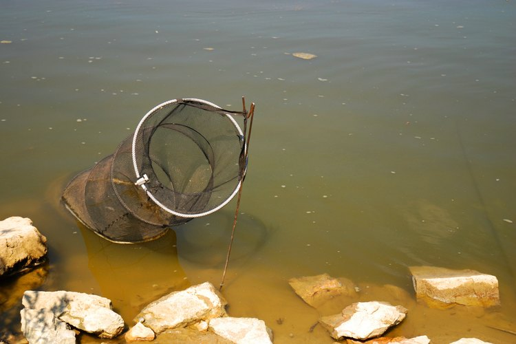 A hoop net sits in a lake.