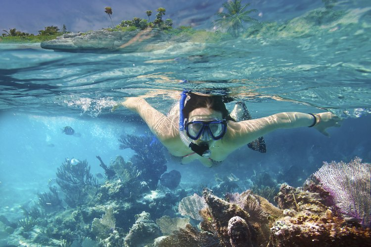 A woman snorkeling in a reef.