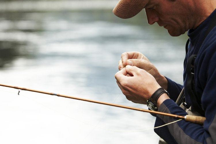Catch your own minnows in a net for an inexpensive and abundant source of bait.