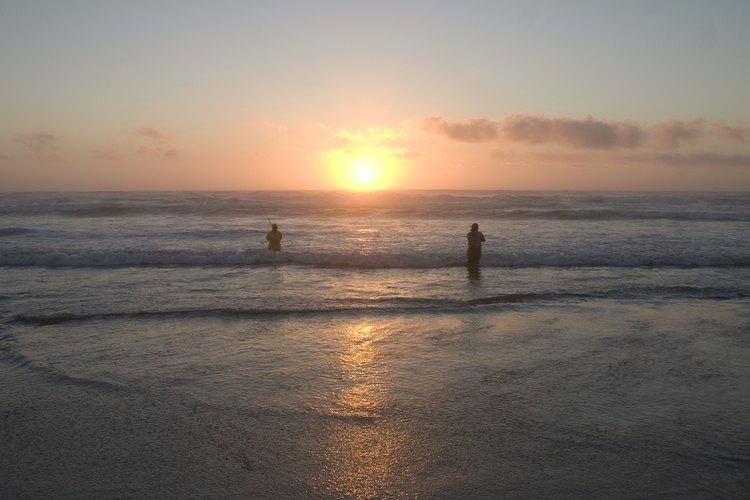 Surf fishing on the coast