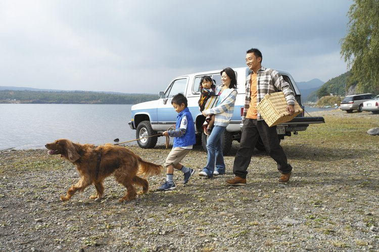 A family of four is walking their dog by a lake.
