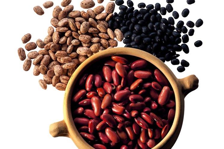 Resultado de imagen para beneficios de comer habichuelas