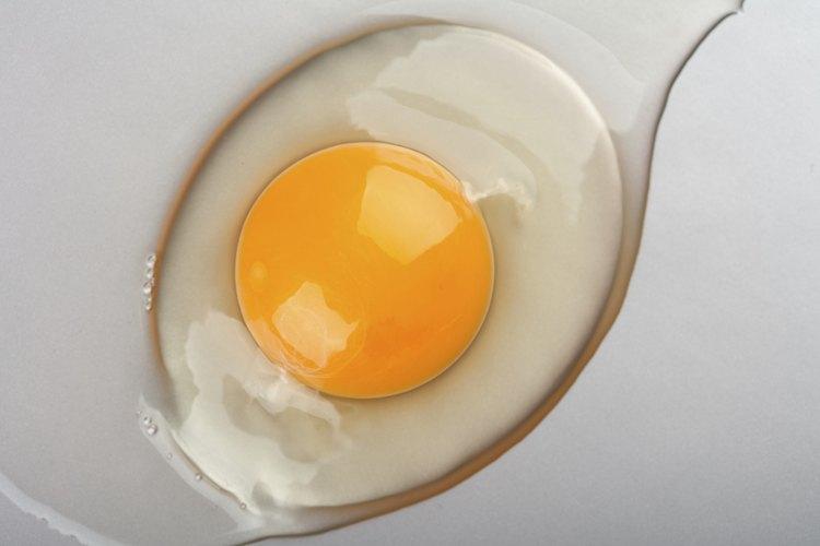 tomar huevo crudo hace dano