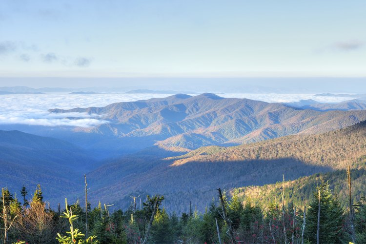 Northern Georgia's Blue Ridge Mountains provide some of the state's wildest camping opportunities.
