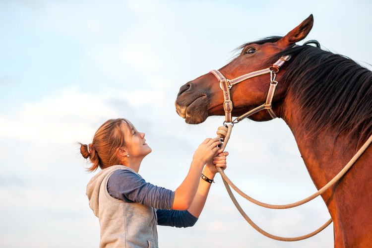 How to Use Horse Liniment for People