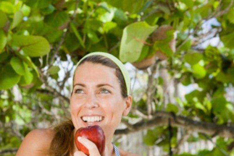 cuantas manzanas me puedo comer al dia