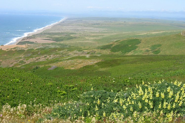 Point Reyes is close to San Francisco.