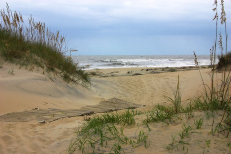 Island Beach State Park offers miles of pristine sands, untarnished by modern development.